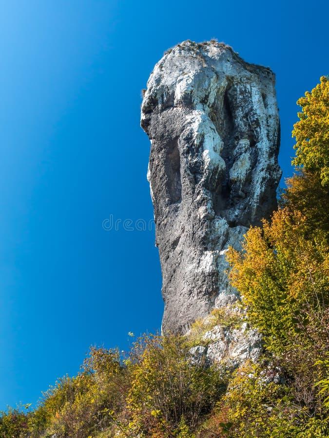 Download Maczuga Herkulesa, Pologne photo stock. Image du hercule - 45356886