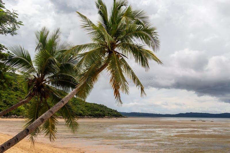 Madagascar, Africa: spiaggia con palme sull'isola di Nosy Be immagini stock
