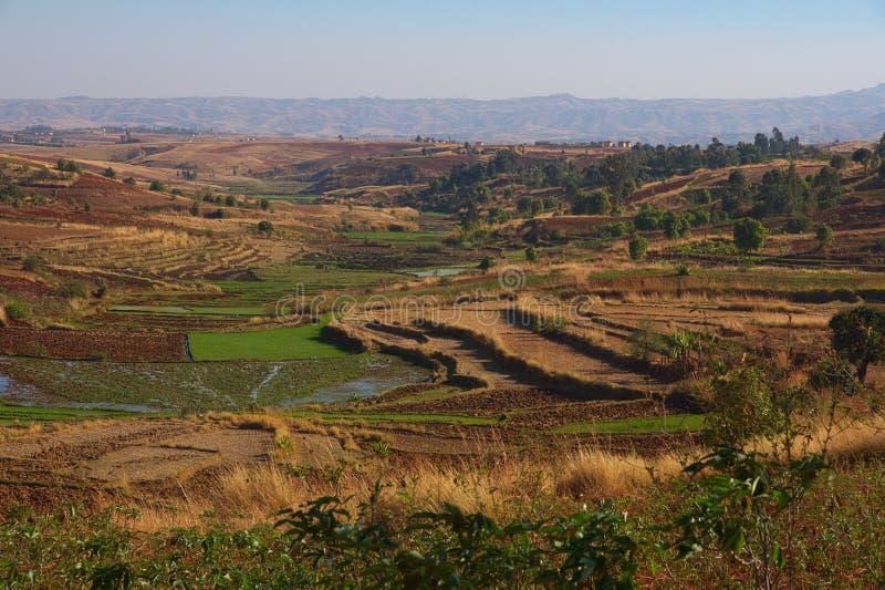 Madagaskar-Landschaft lizenzfreie stockbilder