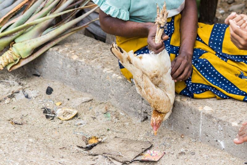 Madagassische Frau, die ein lebendiges Huhn bereit, am Markt in Toliara verkauft zu werden hält madagaskar stockfotografie