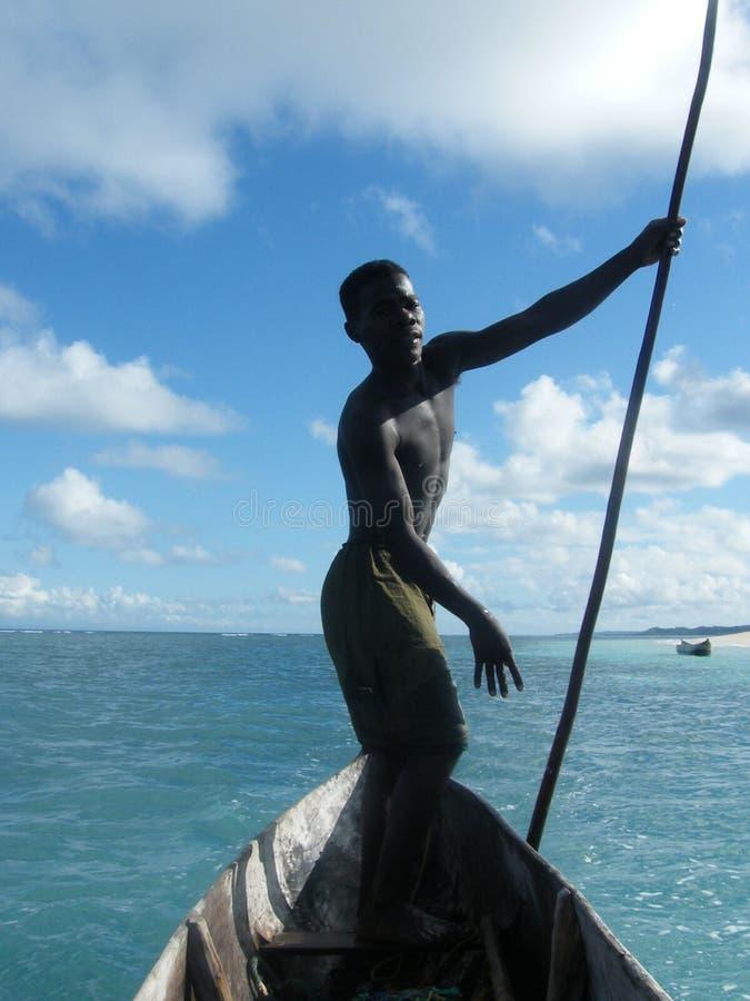 Madagassischer gebürtiger Segler stockbilder