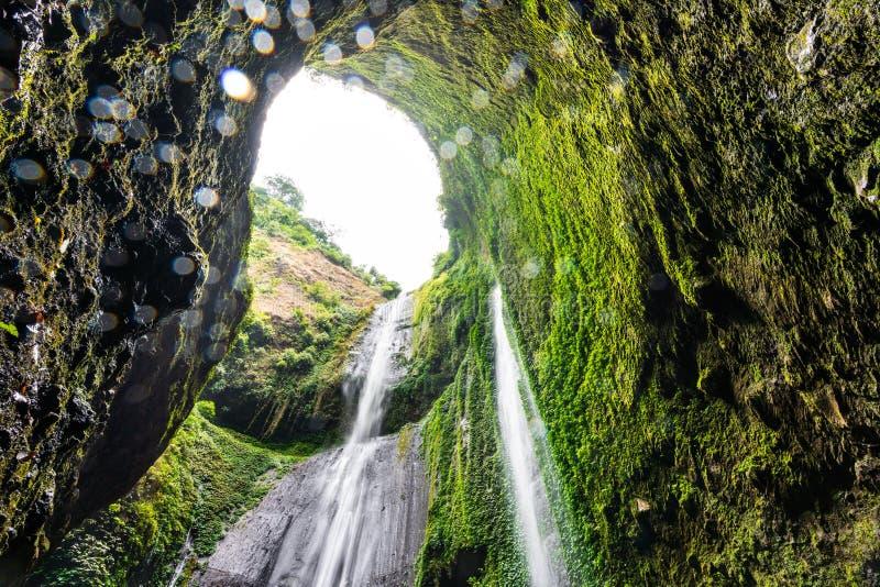 Madakaripura siklawa w Indonezja obrazy stock