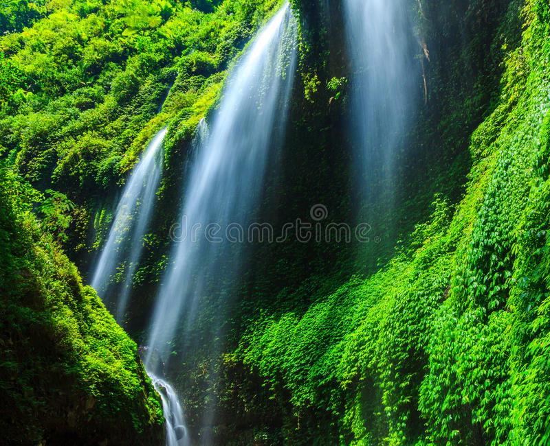 Madakaripura siklawa, Wschodni Jawa, Indonezja obraz stock