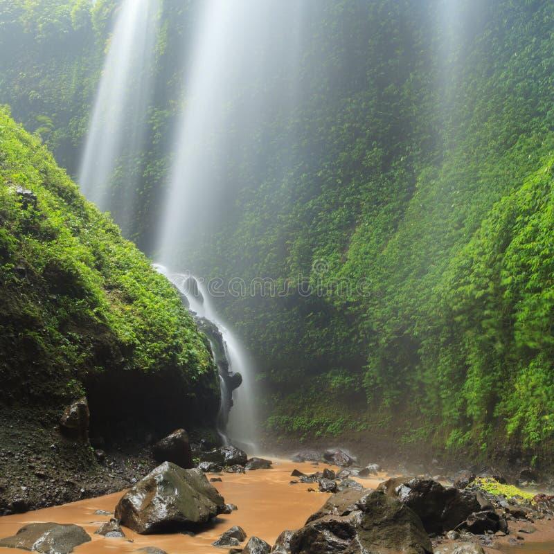 "Madakaripurawaterval †""Diep Forest Waterfall in Oost-Java stock foto"