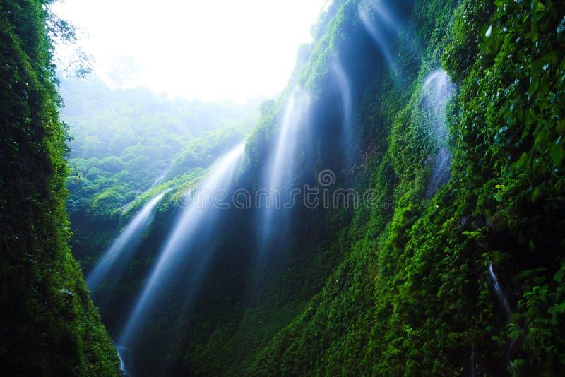 Madakaripurawaterval, Oost-Java, Indonesië royalty-vrije stock fotografie