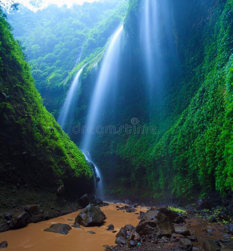 Madakaripurawaterval, Oost-Java, Indonesië stock afbeelding