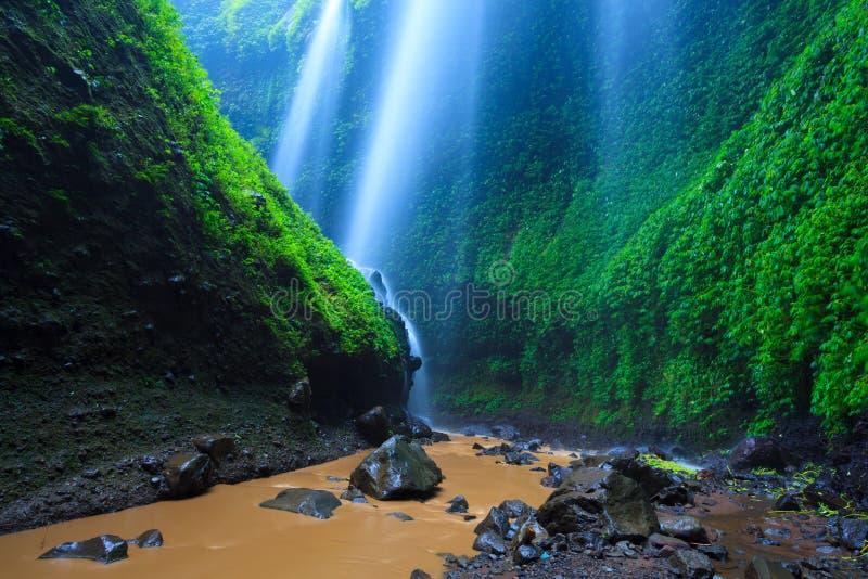 Madakaripurawaterval, Oost-Java, Indonesië stock afbeeldingen