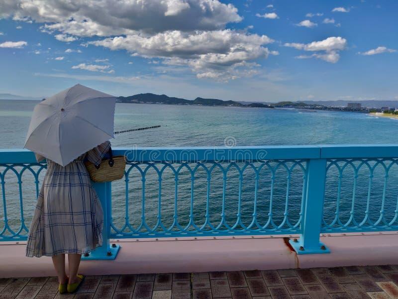 Madame de fantaisie japonaise On le pont image libre de droits