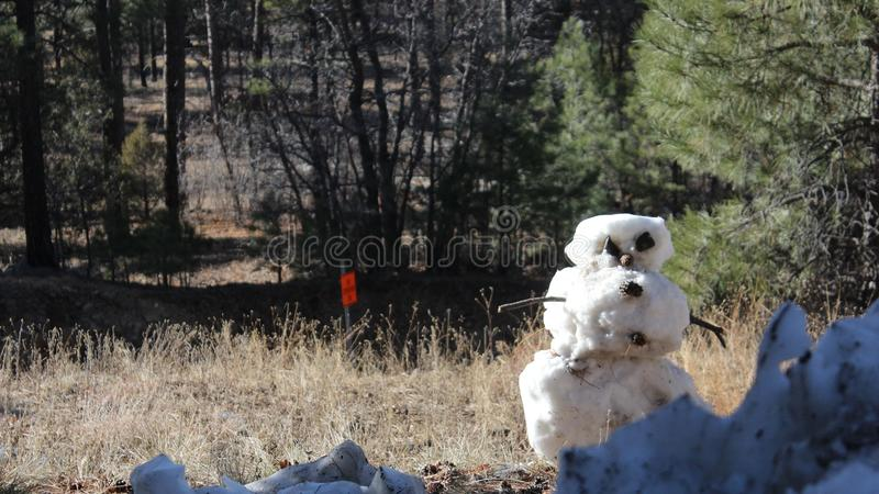 Snowman, IN THE SUMMER? royalty free stock photography