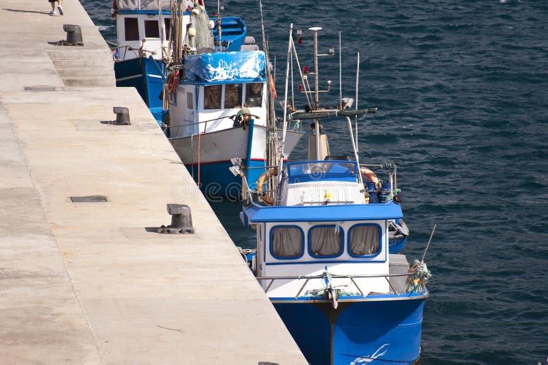 Madeira fotografía de archivo libre de regalías