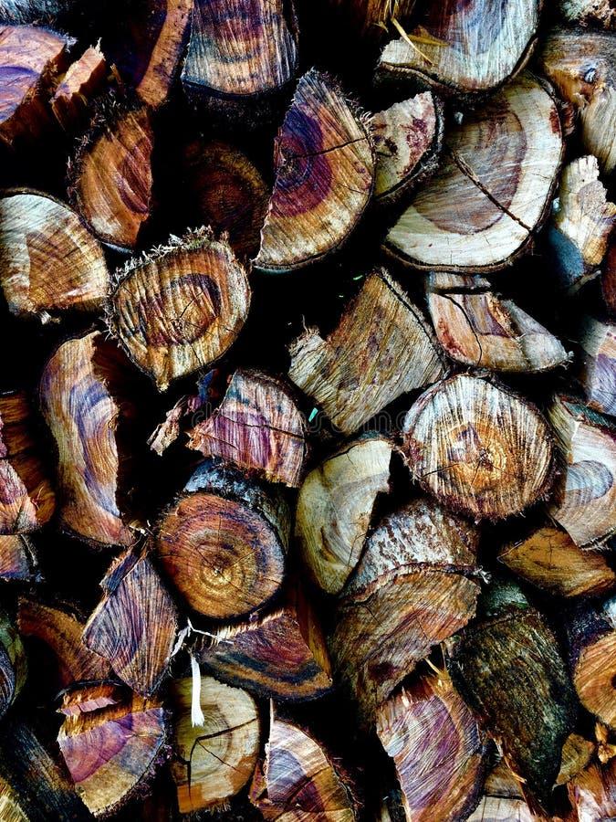 Madeira foto de stock
