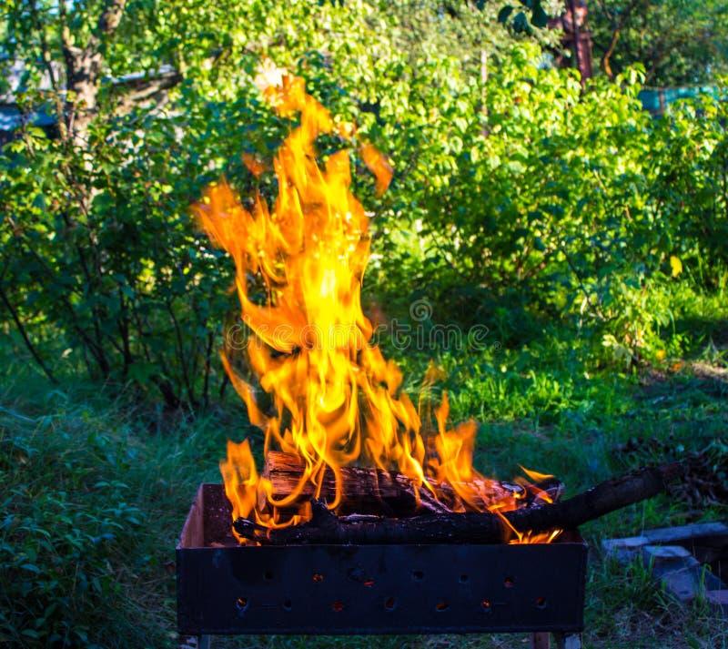 Madeira ardente em um caldeireiro Fogo forte na grade fotografia de stock royalty free