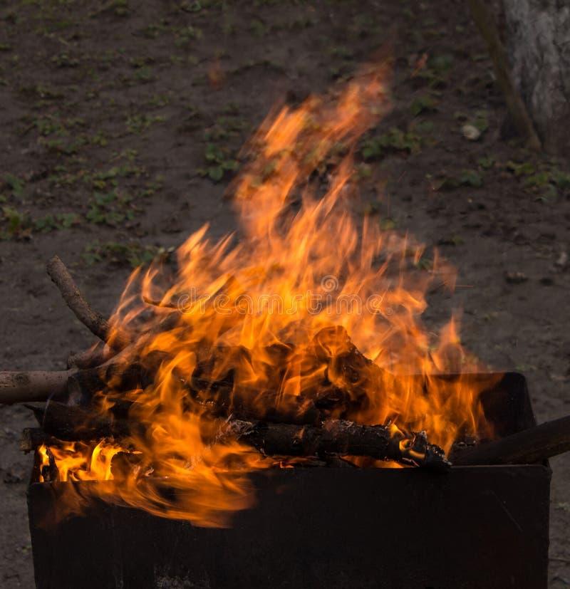 Madeira ardente em um caldeireiro Fogo forte na grade fotos de stock royalty free