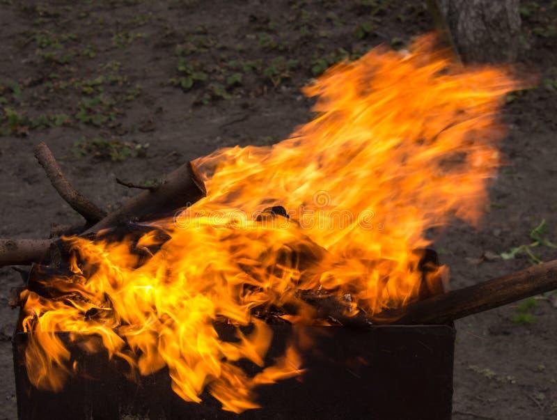 Madeira ardente em um caldeireiro Fogo forte na grade imagens de stock