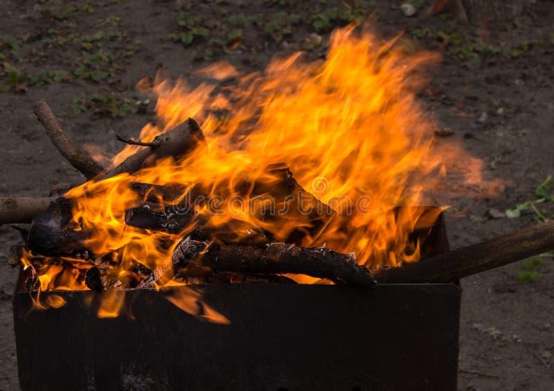 Madeira ardente em um caldeireiro Fogo forte na grade foto de stock royalty free