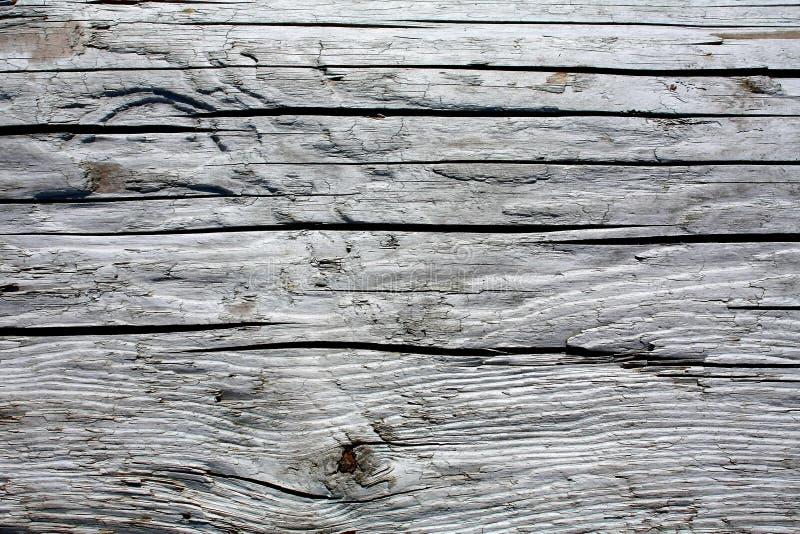 Madeira cinzenta velha. fotografia de stock royalty free