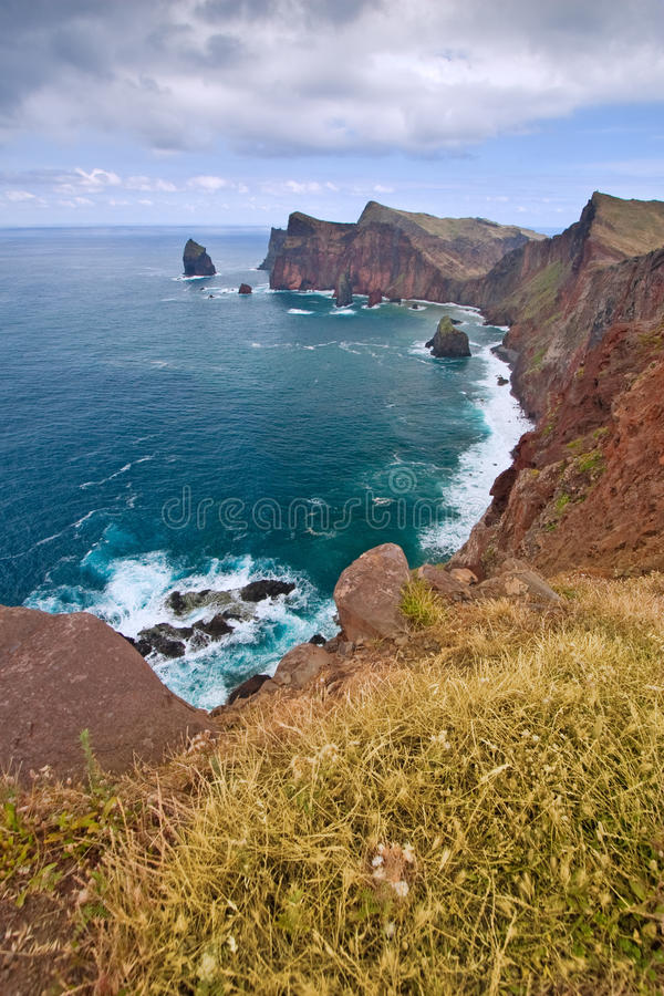 Download Madeira coast stock photo. Image of atlantic, plant, idyllic - 19496416