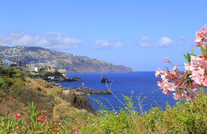 Madeira coast. Beautiful coastline near Funchal Madeira royalty free stock photos