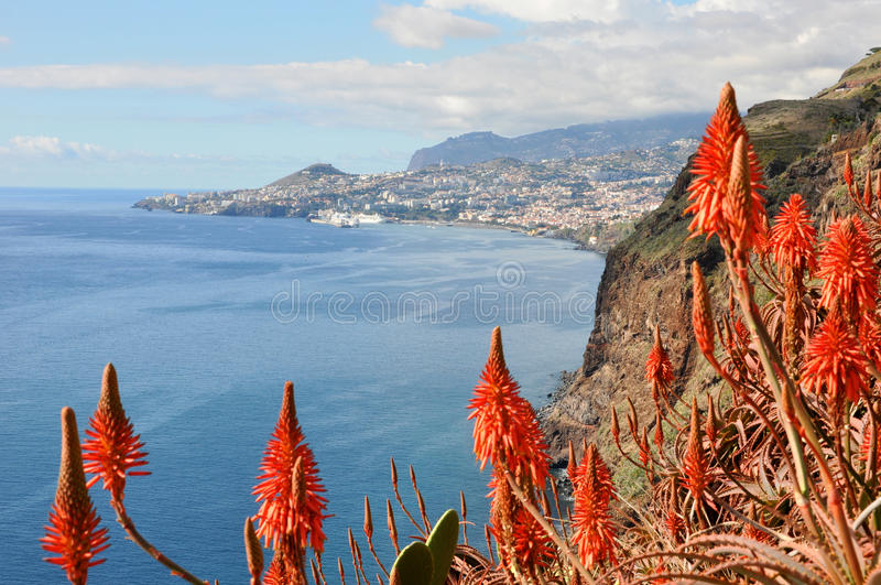 Madeira coast, Funchal. Overview of capital city funchal on madeira island, portugal stock photo