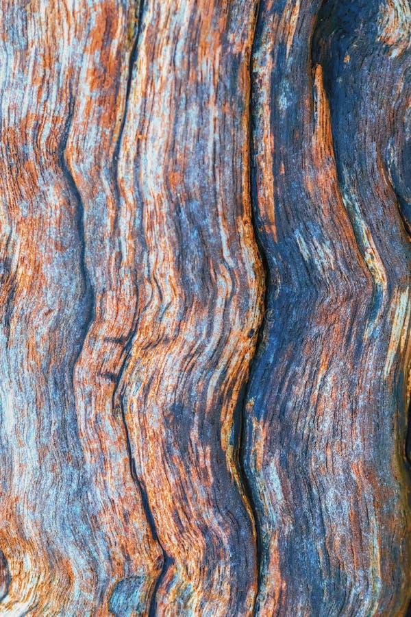 Madeira colorida bonita foto de stock