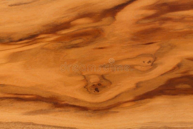 Madeira da azeitona do fundo Fim de madeira da textura do vintage acima foto de stock royalty free