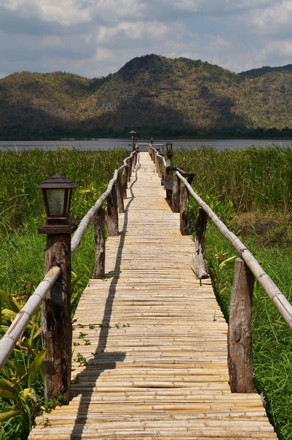 Madeira da ponte do caminho ao lago fotografia de stock