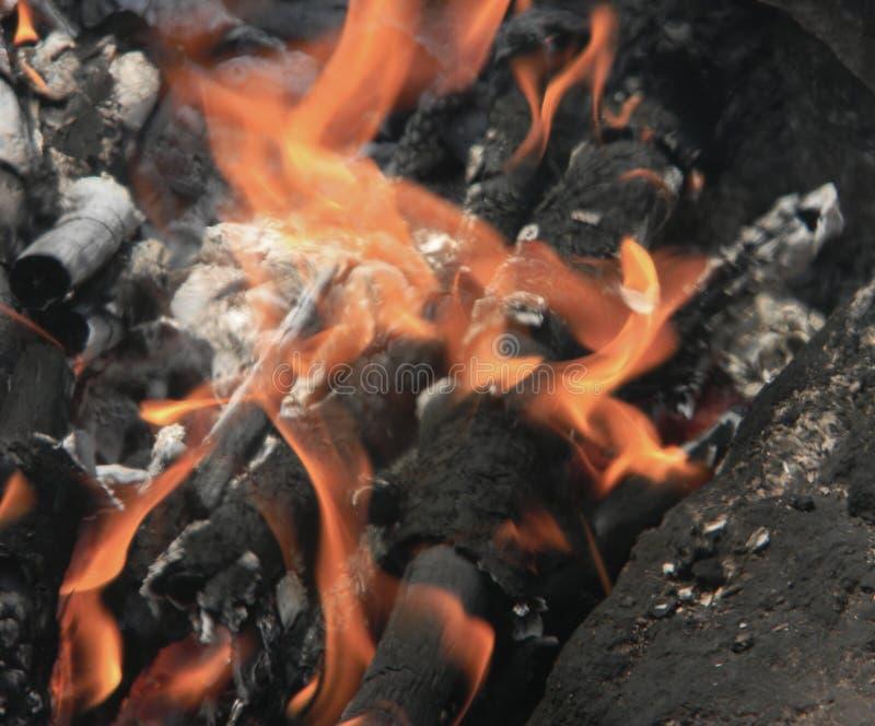 Madeira de queimadura para um piquenique Chama quente e ardente fotografia de stock royalty free