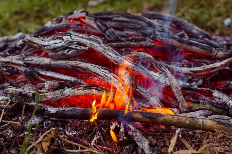 Madeira e carvão ardentes na chaminé Close up da madeira ardente quente, imagem de stock royalty free