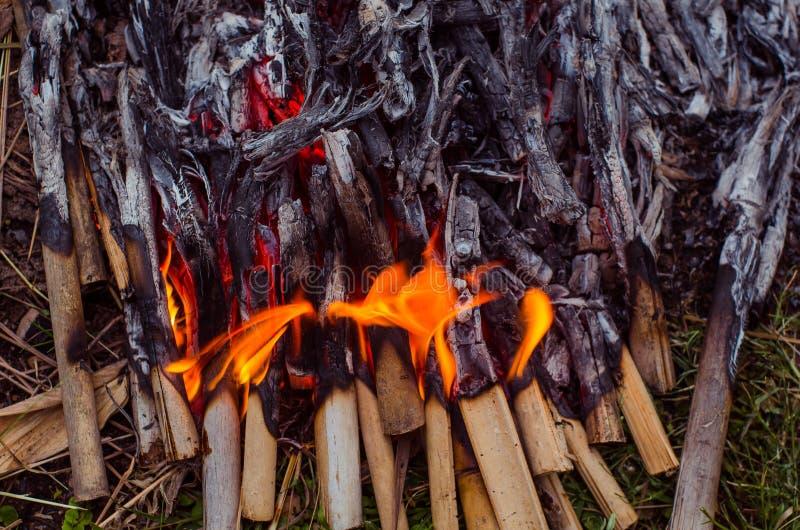 Madeira e carvão ardentes na chaminé Close up da madeira ardente quente, fotos de stock royalty free