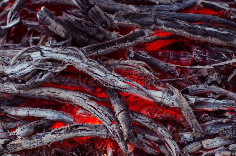 Madeira e carvão ardentes na chaminé Close up da madeira ardente quente, fotos de stock