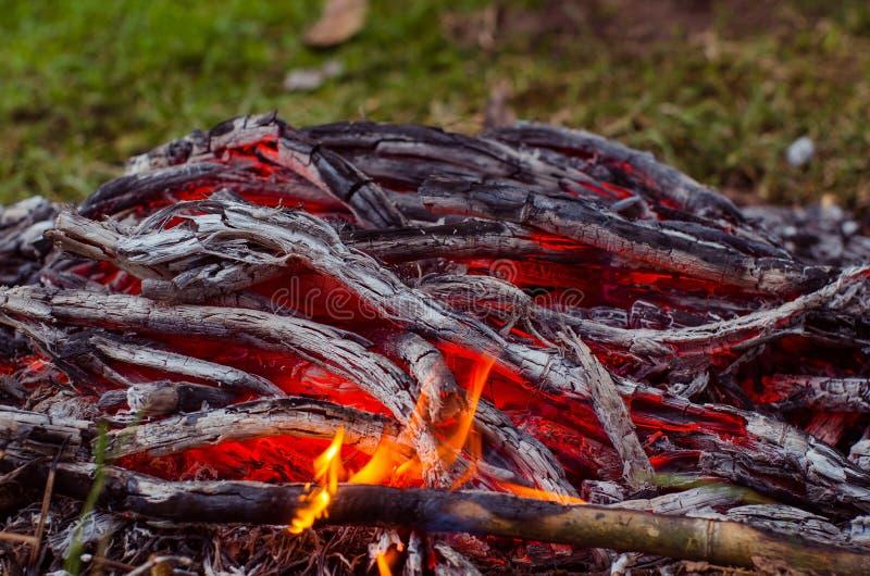 Madeira e carvão ardentes na chaminé Close up da madeira ardente quente, imagens de stock