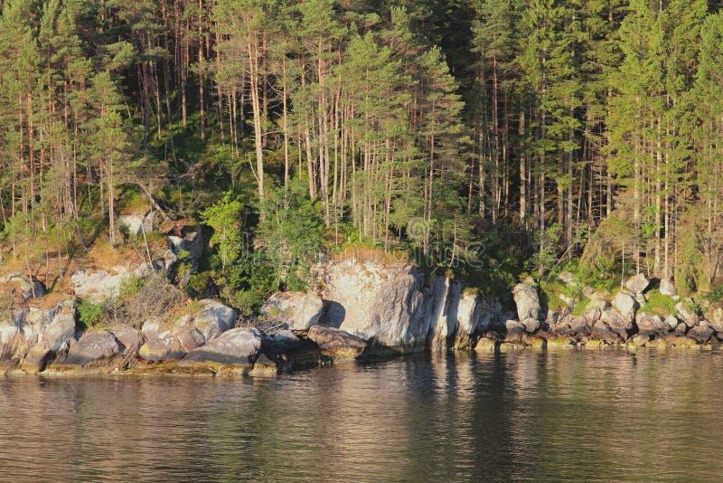 Madeira em terra Salhusfjorden Bergen, Hordaland, Noruega fotografia de stock royalty free
