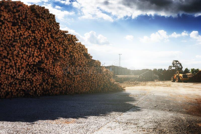 Madeira empilhada no moinho da madeira serrada imagem de stock royalty free