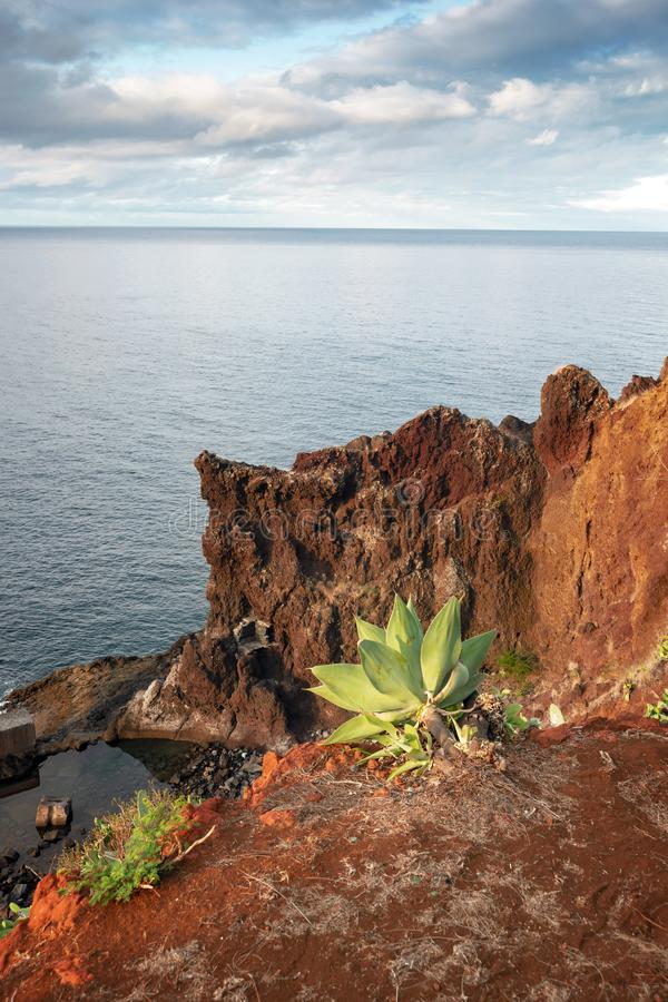 Madeira Island scenery royalty free stock photos