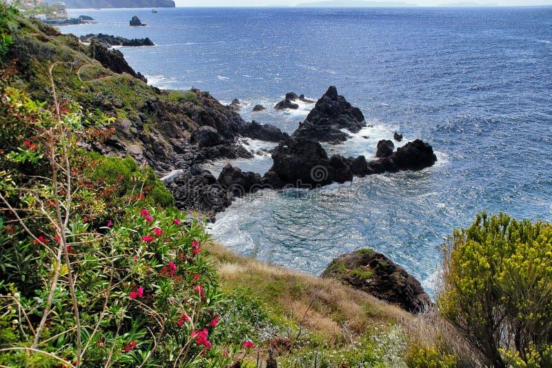 Madeira-Küste lizenzfreies stockfoto