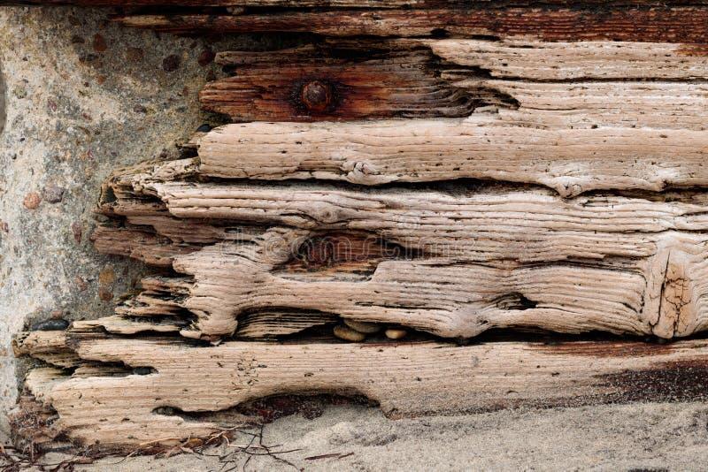 A madeira lançada à costa com parafusos oxidados ajustou-se contra uma parede de pedra concreta, fundo do grunge do vintage fotos de stock royalty free