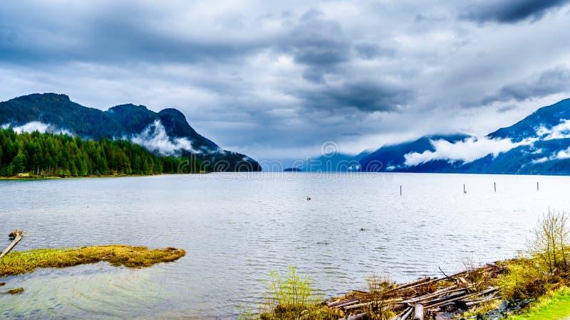 Madeira lançada à costa nas costas de Pitt Lake sob um céu nebuloso escuro com as nuvens de chuva que penduram em torno das monta fotos de stock royalty free