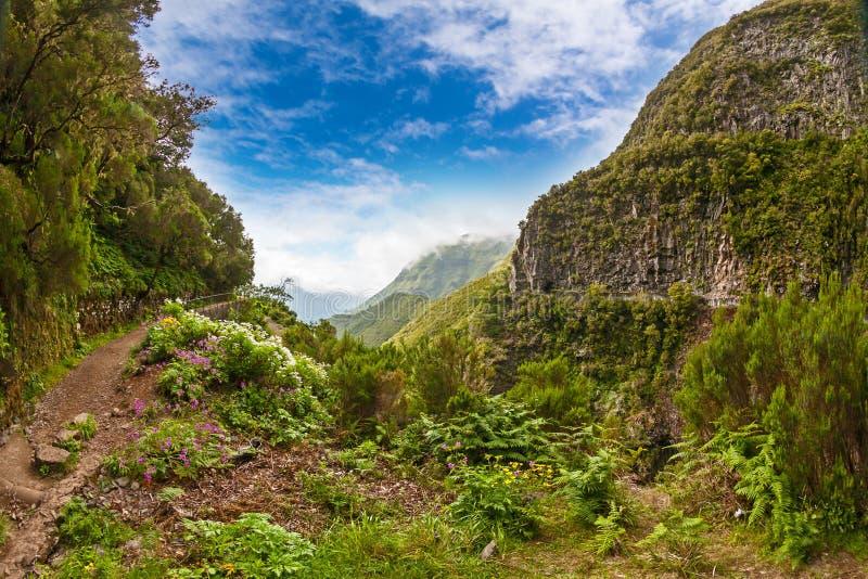 Madeira, paisaje idílico fotografía de archivo