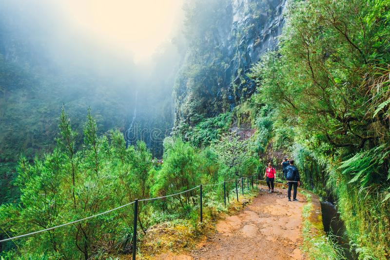 Unidentified people walking to Levada Risco, Madeira Island, Portugall. Madeira, Portugal 04 JULY, 2016: Unidentified people walking to Levada Risco, Madeira royalty free stock photos