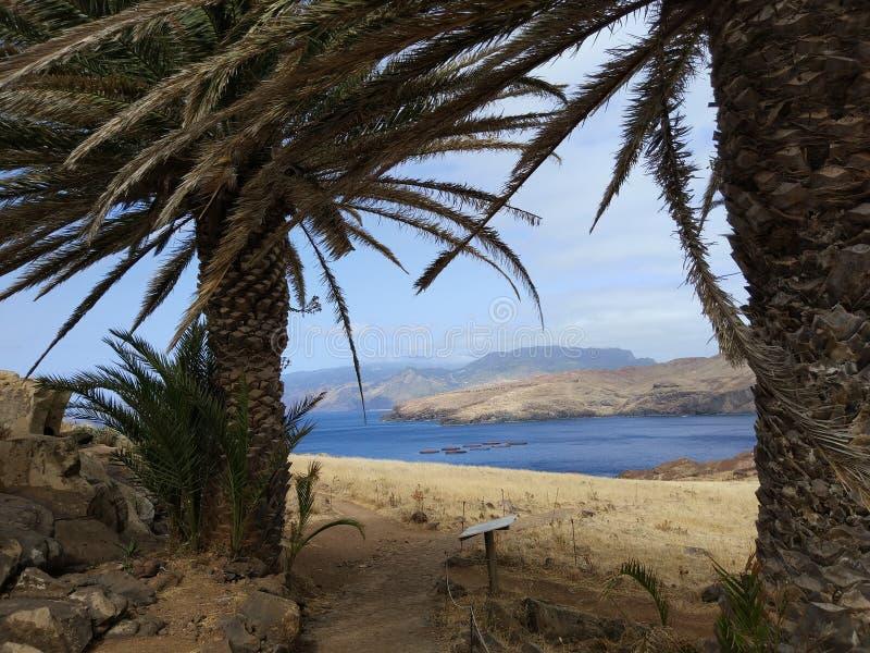 Madeira que camina la ruta por la costa fotos de archivo libres de regalías