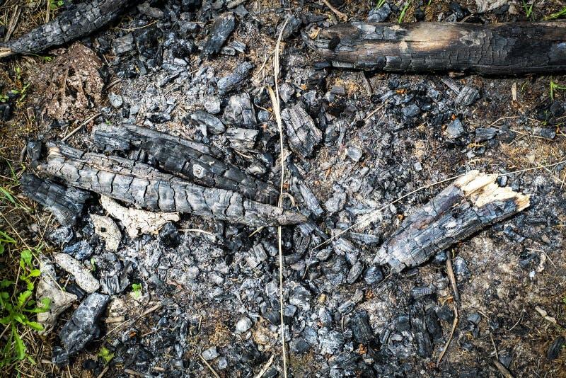 Madeira queimada imagens de stock