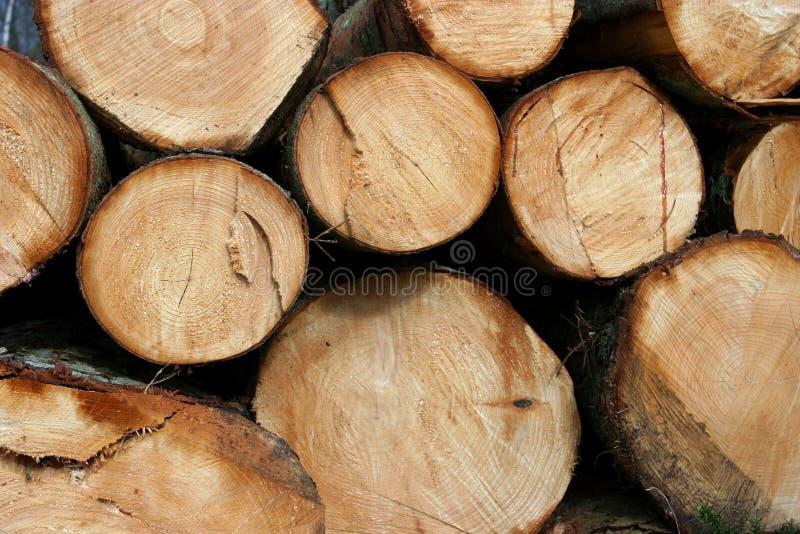 A madeira registra a grão de madeira fotos de stock
