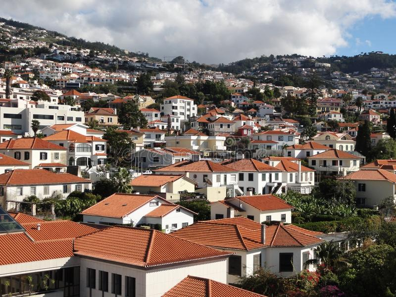 Download Madeira scene stock image. Image of house, home, residential - 23668679