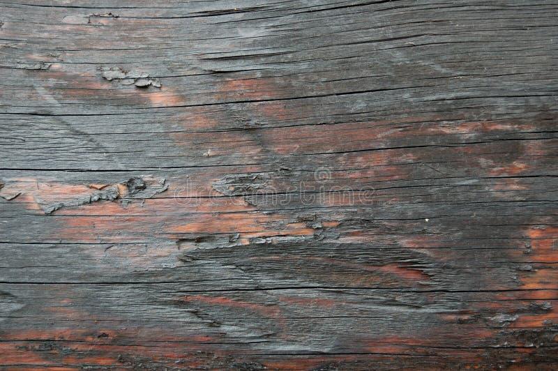 Madeira seca fotos de stock