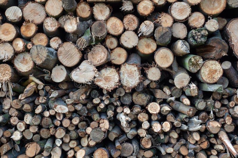 Madeira Spruce no fundo Pilha da lenha fotografia de stock royalty free