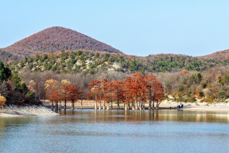 Madeira vermelha bonita do cipreste no lago da montanha em Sukko por Anapa, Rússia Paisagem c?nico do outono Montanhas de C?ucaso fotos de stock