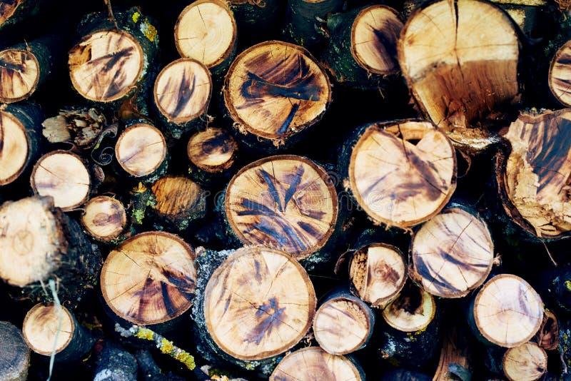 Madeira vista imagens de stock royalty free