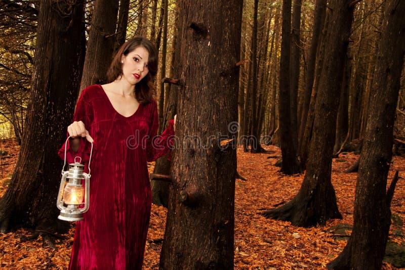 Madeiras da lanterna da mulher fotografia de stock