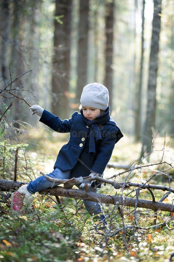 Madeiras de exploração do outono da menina bonito pelo córrego da mola fotos de stock royalty free