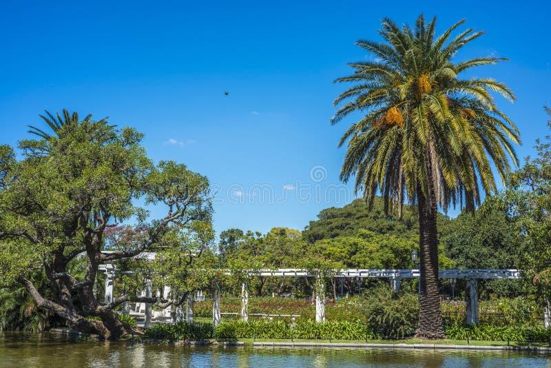 Madeiras de Palermo em Buenos Aires, Argentina foto de stock